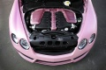 2009-mansory-bentley-continental-gt-speed-vitesse-rose-engine-view